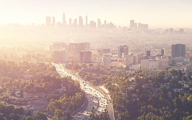 Global Logistical Connections, Inc Los Angeles